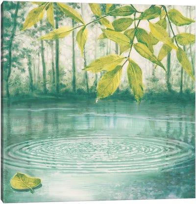 Lumire du matin II Canvas Art Print