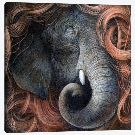 Tangled Wisdom Canvas Print #MAY111} by Dan May Canvas Artwork