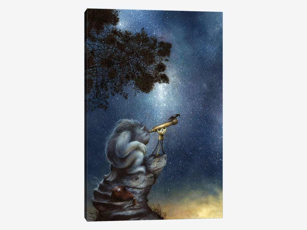 The Cosmic Wanderer by Dan May 1-piece Art Print