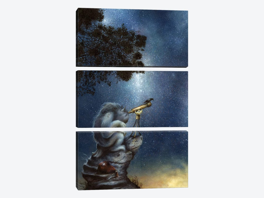 The Cosmic Wanderer by Dan May 3-piece Canvas Print