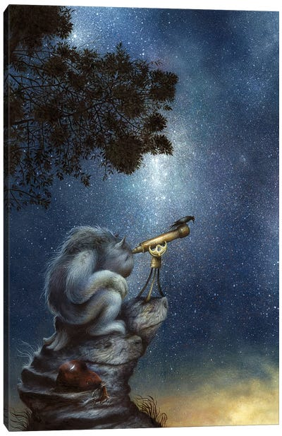The Cosmic Wanderer Canvas Art Print