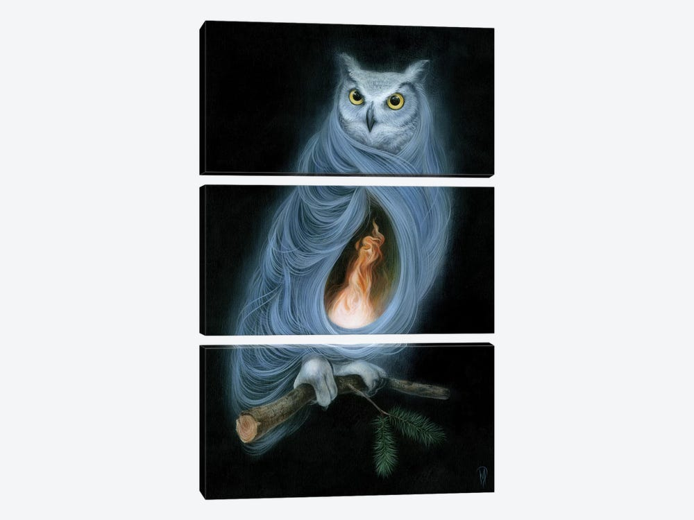 The Owls Are Not What They Seem by Dan May 3-piece Canvas Artwork