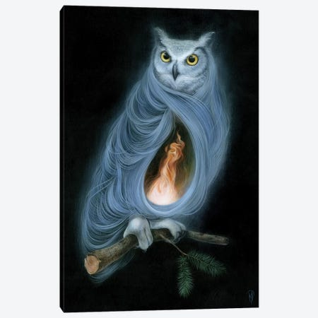 The Owls Are Not What They Seem Canvas Print #MAY131} by Dan May Canvas Art