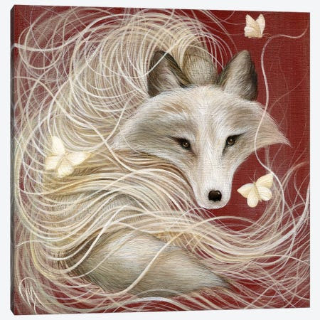 White Fox Canvas Print #MAY151} by Dan May Canvas Art