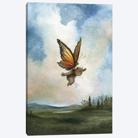 Delicate Landing   Canvas Print #MAY160} by Dan May Canvas Print