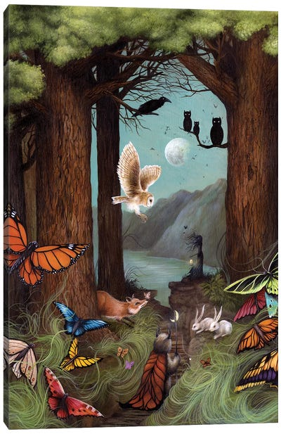 Butterfly Kingdom Canvas Art Print