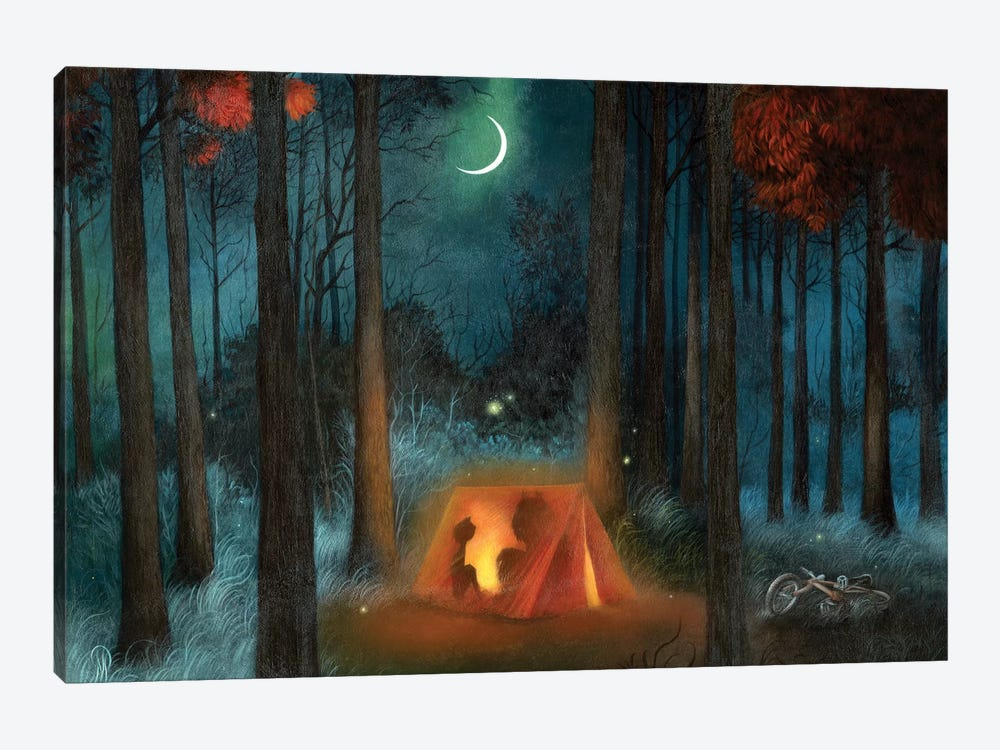 Campout by Dan May 1-piece Canvas Wall Art