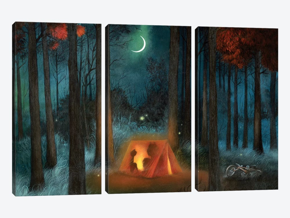 Campout by Dan May 3-piece Canvas Wall Art
