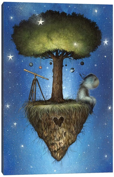 Cosmic Dreamer Canvas Art Print