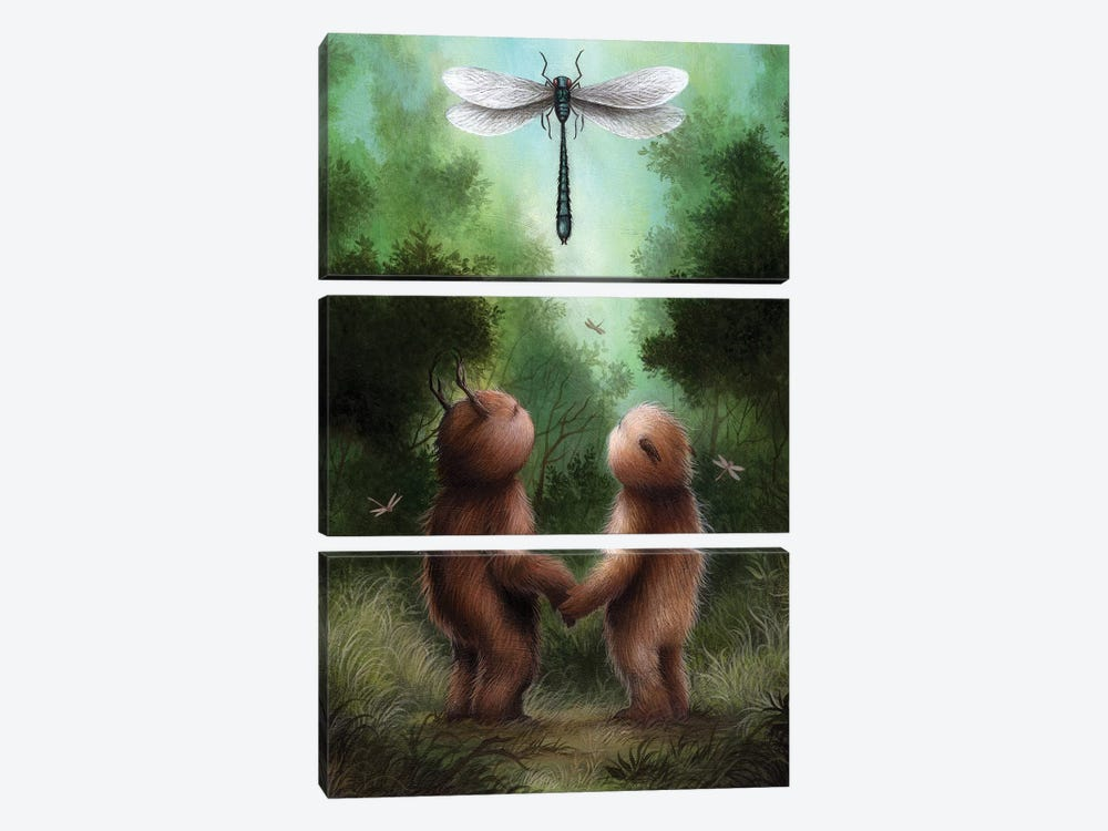 Dragonfly Dance by Dan May 3-piece Canvas Wall Art