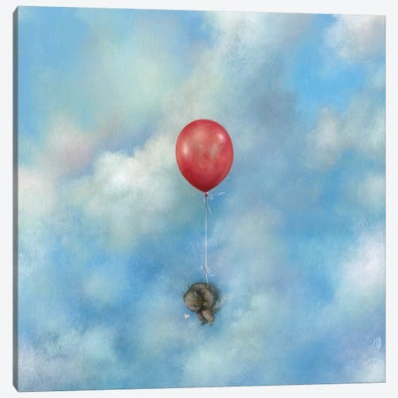 Float Away Canvas Print #MAY44} by Dan May Canvas Art Print