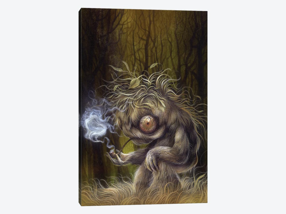 Forest Dweller by Dan May 1-piece Canvas Art Print