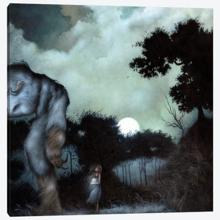 Into The Dark Canvas Print #MAY61} by Dan May Canvas Art