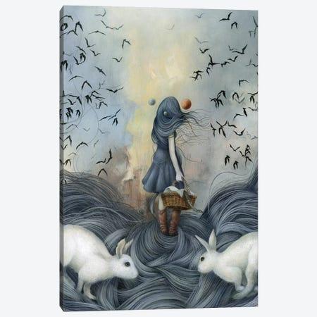 Jupiter Rose Canvas Print #MAY64} by Dan May Canvas Print