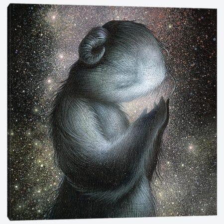 Nebulous Canvas Print #MAY74} by Dan May Canvas Art