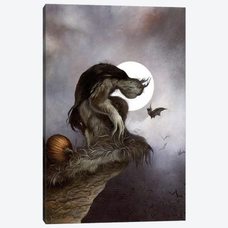 Night Fall Canvas Print #MAY76} by Dan May Canvas Art
