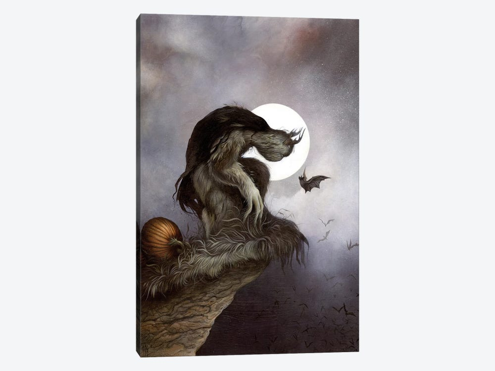 Night Fall by Dan May 1-piece Canvas Art Print