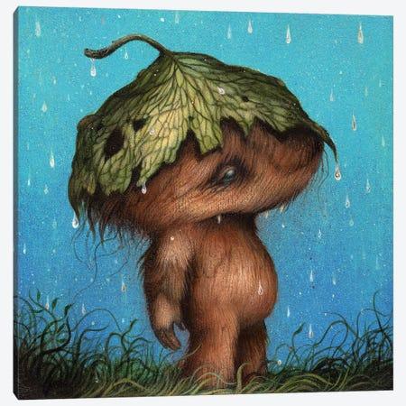 April Showers Canvas Print #MAY7} by Dan May Canvas Artwork