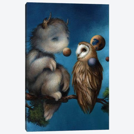 Orbital Contemplation Canvas Print #MAY80} by Dan May Canvas Art
