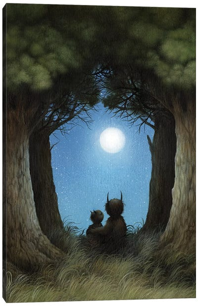 Peering Into The Night Canvas Art Print