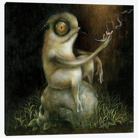 Puff Canvas Print #MAY91} by Dan May Canvas Print