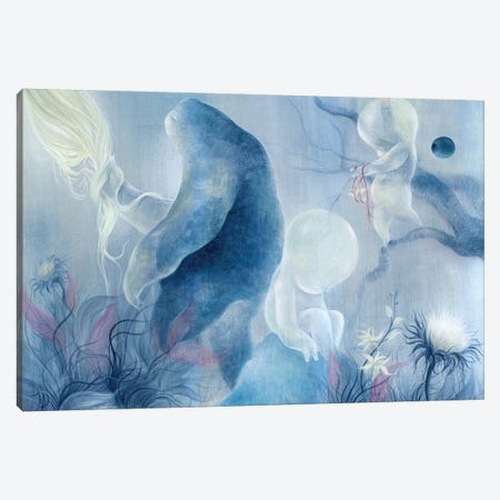 Pulled From The Heavens Canvas Print #MAY92} by Dan May Canvas Print