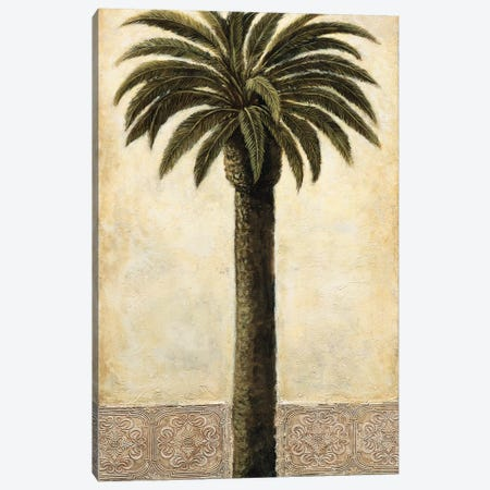Silhouette Palms I Canvas Print #MAZ11} by André Mazo Canvas Art