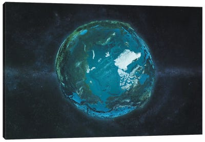 The Arctic In Relief Canvas Art Print
