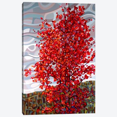 Passing Storm Canvas Print #MBD13} by Mandy Budan Canvas Artwork