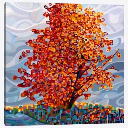 Stormlight Canvas Print #MBD18} by Mandy Budan Canvas Wall Art