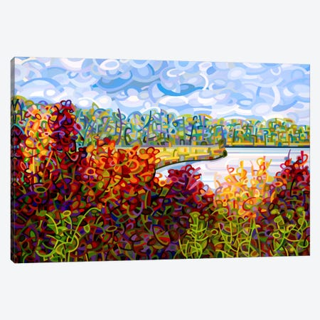 Summers End Canvas Print #MBD20} by Mandy Budan Canvas Print