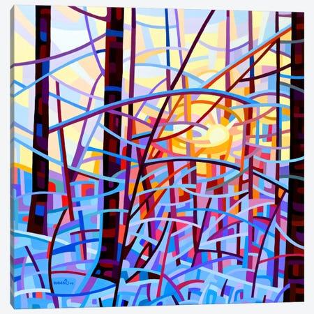 Sunrise Canvas Print #MBD21} by Mandy Budan Canvas Art Print