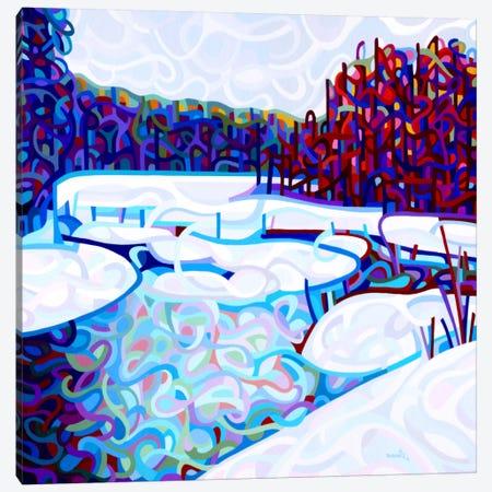 Thaw Canvas Print #MBD22} by Mandy Budan Canvas Art Print