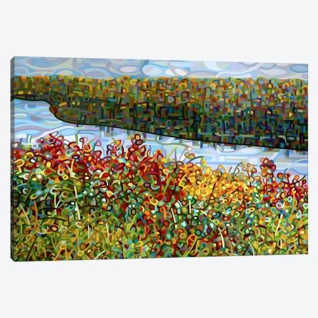 The River Canvas Print #MBD23} by Mandy Budan Canvas Art Print