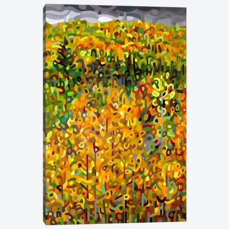 Towards Autumn Canvas Print #MBD24} by Mandy Budan Canvas Art