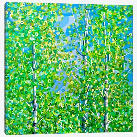 Among Friends Canvas Print #MBD26} by Mandy Budan Canvas Artwork