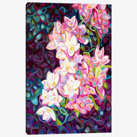 Cascade Canvas Print #MBD2} by Mandy Budan Canvas Wall Art