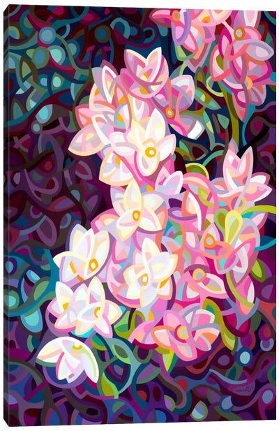 Cascade Canvas Print #MBD2