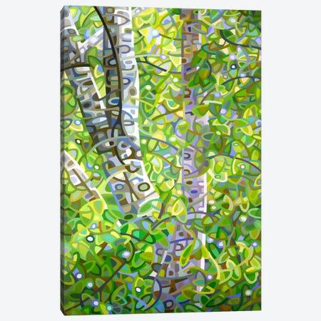 Hide and Seek Canvas Print #MBD6} by Mandy Budan Canvas Print
