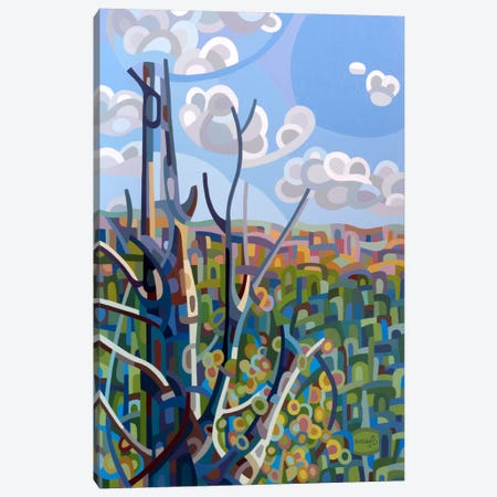 Hockley Valley Canvas Print #MBD7} by Mandy Budan Canvas Art Print