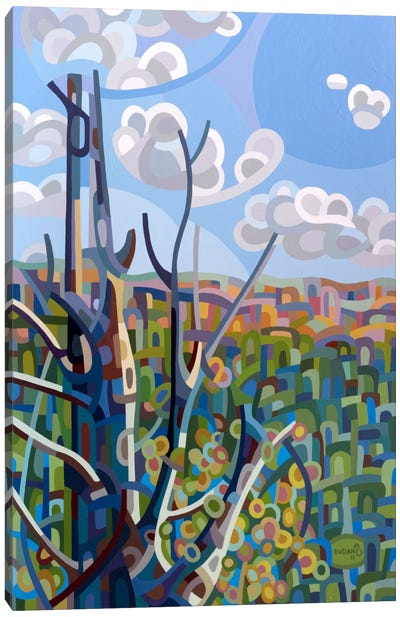 Hockley Valley Canvas Art Print
