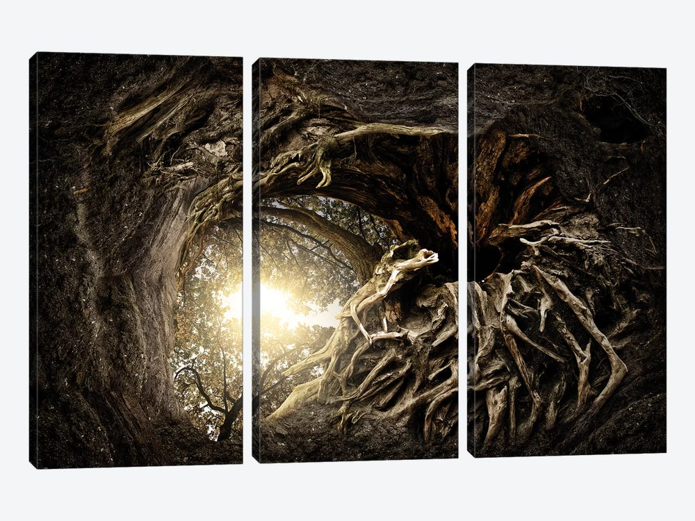 Under The Trees #1 by Matthias Bergolth 3-piece Canvas Print