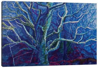 Fairy Forest Canvas Art Print