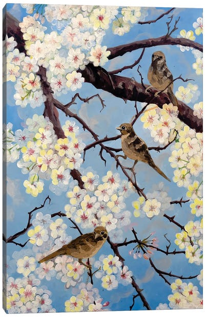 Spring Has Come Canvas Art Print