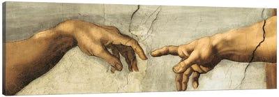 Creazione di Adamo, Detail Canvas Art Print