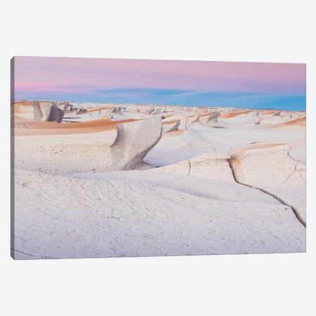 Pumice Stone Field Canvas Print #MBT36} by Mauro Battistelli Canvas Print