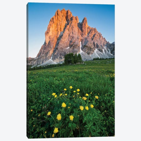 Blooming In The Dolomites Canvas Print #MBT93} by Mauro Battistelli Canvas Artwork