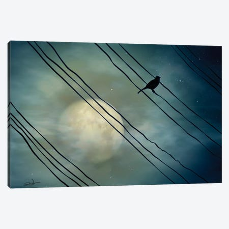 Pássaro ao Luar (Bird Moonlight) Canvas Print #MCA23} by Marcel Caram Art Print