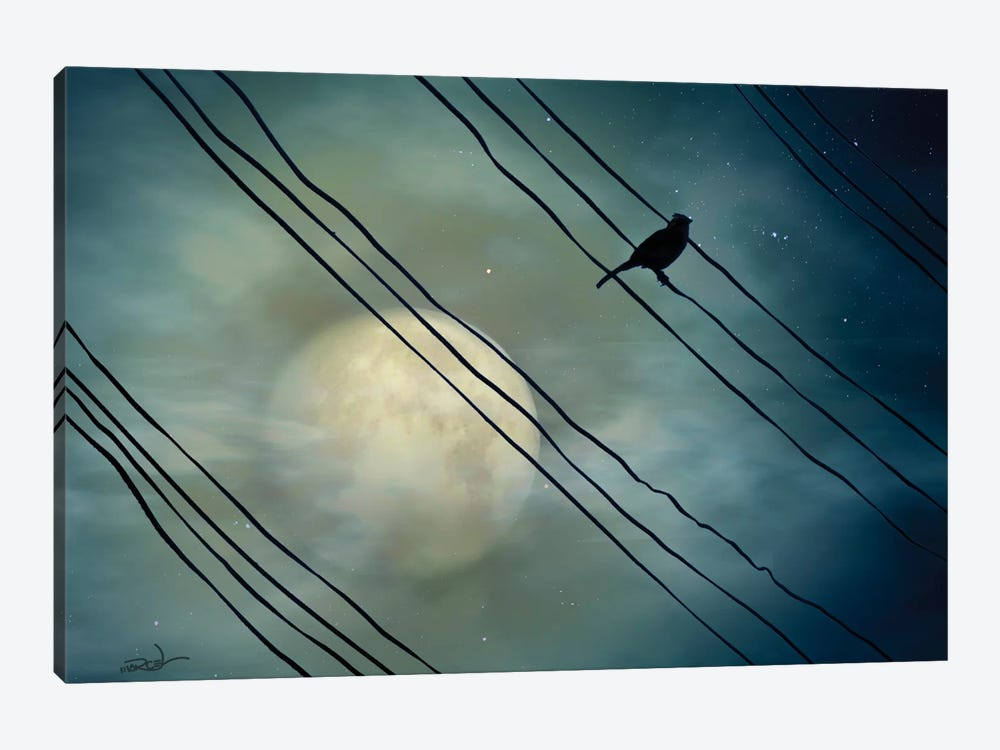 Pássaro ao Luar (Bird Moonlight) by Marcel Caram 1-piece Canvas Print