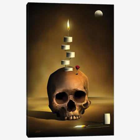 Caveira Composição (Skull Composition) Canvas Print #MCA31} by Marcel Caram Canvas Art